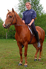 Many people form such strong attachments to their horses that they consider them to be pets.