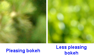 The out of focus area on the left is soft, whereas the blurred area on the right shows harder-edged circles in the highlights.