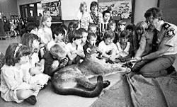 Although the stuffed cougar is the center of interest, the subject is an instructional wildlife class. A tight close-up of the cougar would not tell you any of this, because it would lack the context of the class.