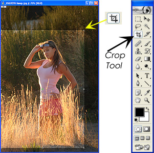 The Crop Tool, shown here in an Adobe Photoshop toolbar, permits quick, accurate cropping, and even allows you to rotate and crop in one step.