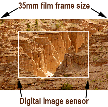 A digital camera's image sensor is typically smaller than the frame size for 35mm film. The exception is the