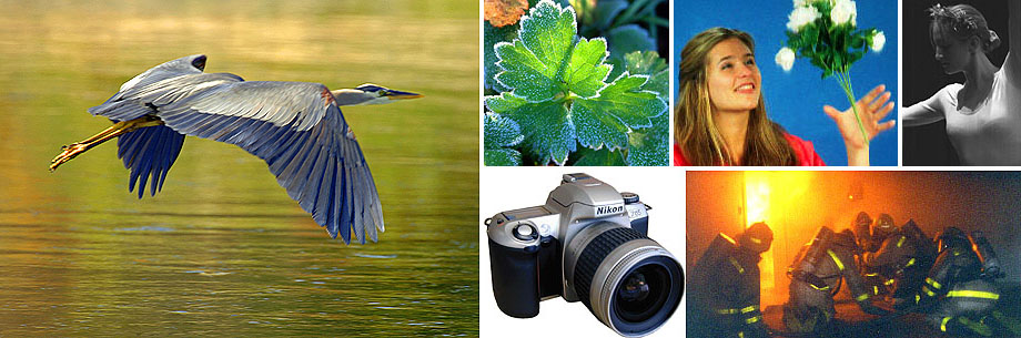 Everything Photography - for beginners, advanced amateurs and professionals.