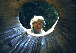 A hollow log serves to frame the subject, whose face is dead center in the image, emphasizing its importance. Even the lines in the log point to the center of interest.