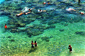 A high shooting angle and a polarizing filter helped to capture snorkelers feeding fish in Hawaii's Hanauma Bay.