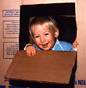 A large appliance carton with cut-out doors and windows is hard for any toddler to resist.